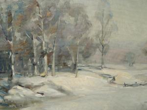 Snow Landscape by Larry Gluck